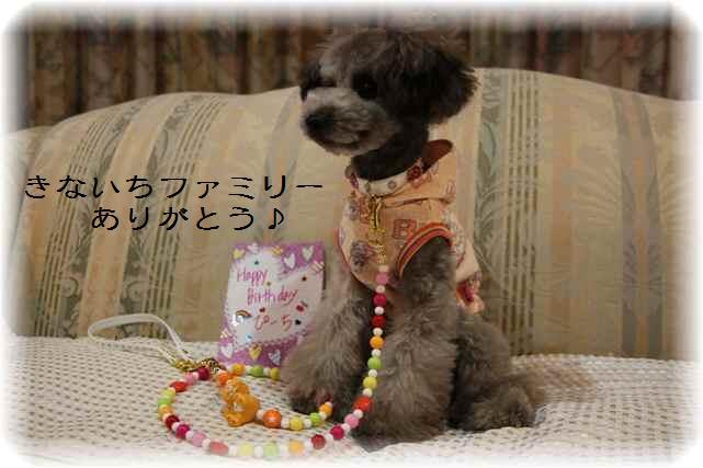 Birthday_11