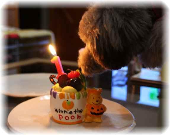 Birthday_7